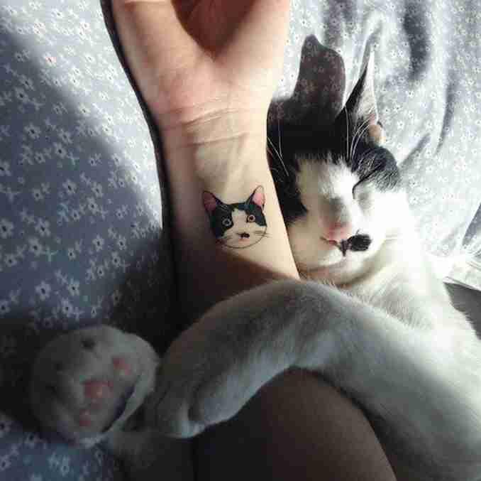 fotos de tatuagens de gatos 03