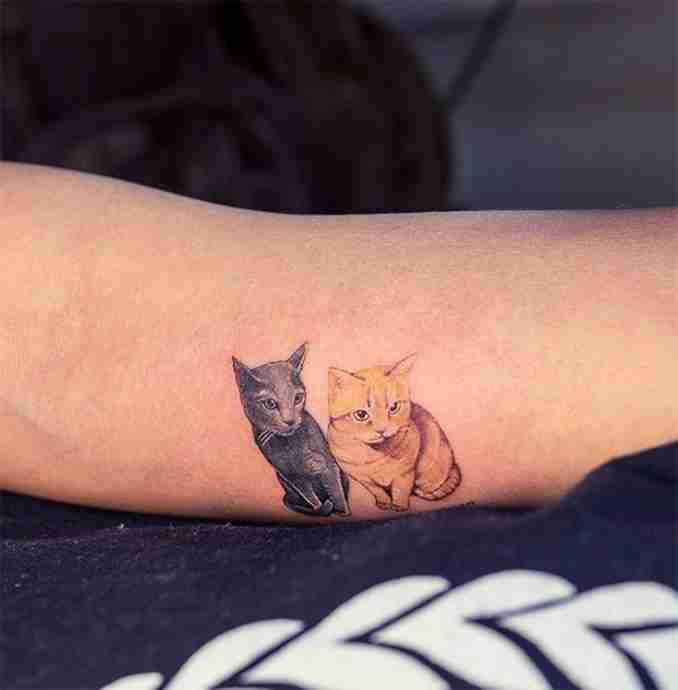 tatuagem de gatos 18