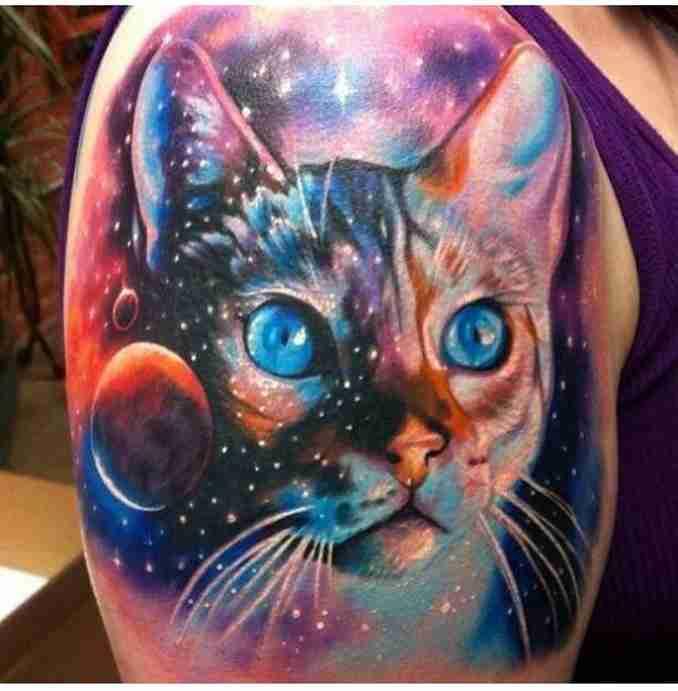 tatuagem de gatos 36