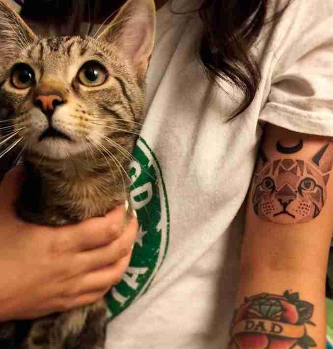 tatuagem de gatos 38