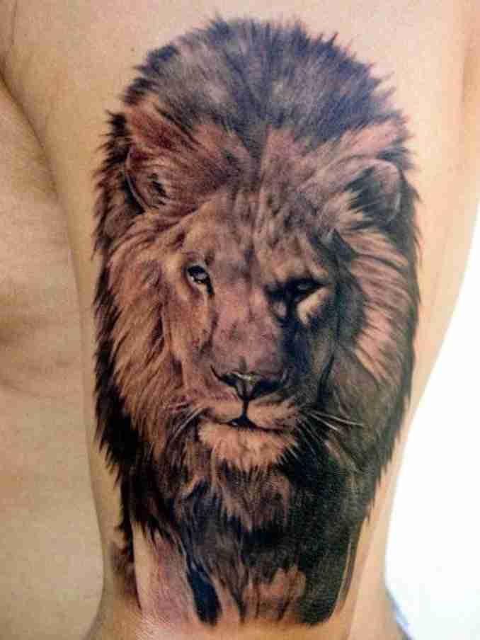fotos de tatuagens leão - 30