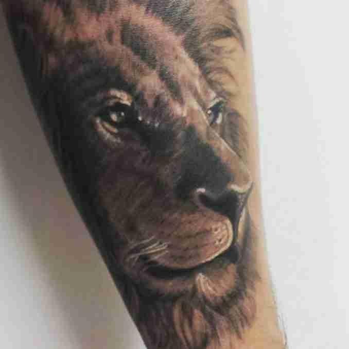 fotos de tatuagens leão - 47