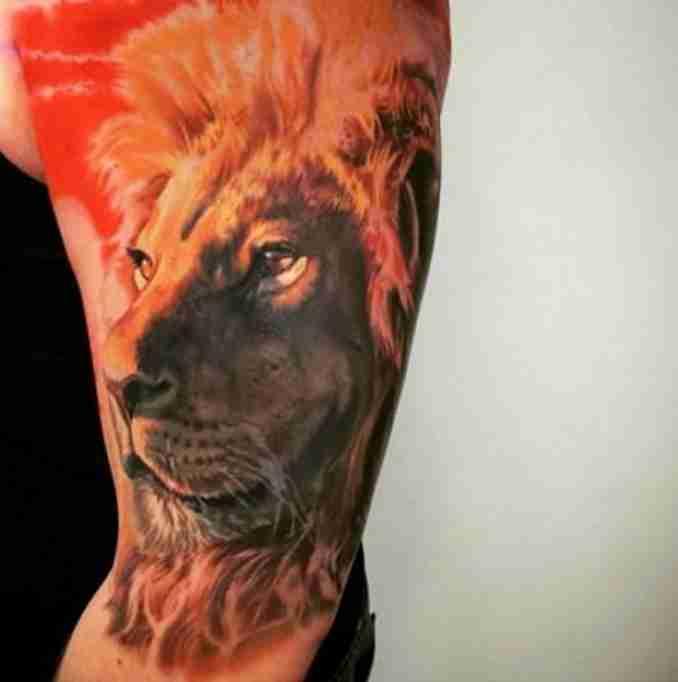 fotos de tatuagens leão - 50