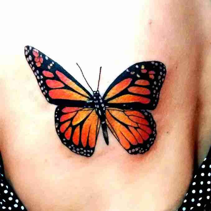 tatuagem com borboleta 47